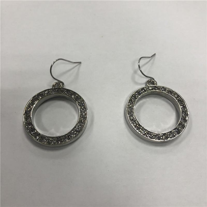 Hoop fish hook earrings with stainess steel