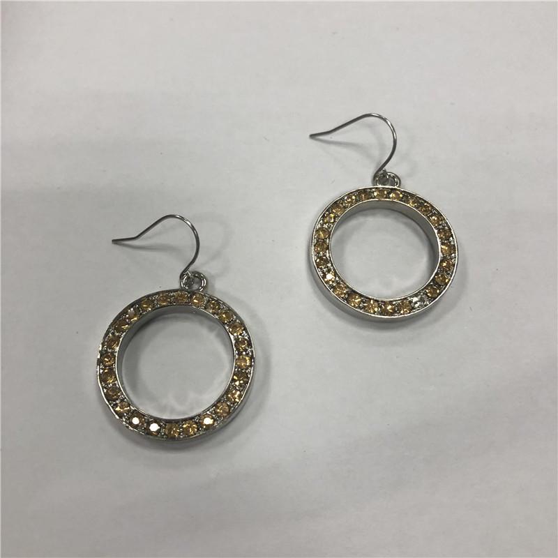 Hoop fish hook earrings with stainees steel